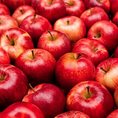 Apple Royal Gala