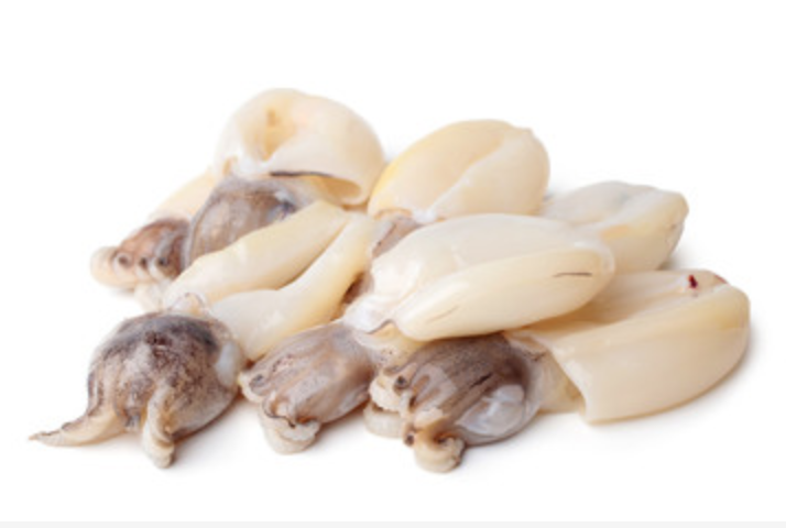 Ocean Plus Whole Cleaned Cuttlefish Size 130/200