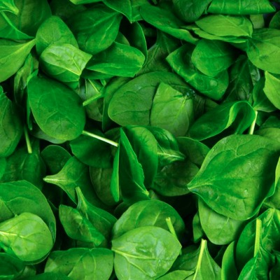 Baby Spinach 500g