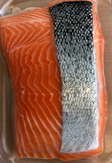 NZ Ora King salmon port