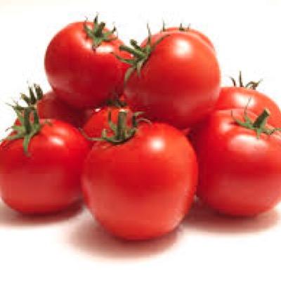 Tomatoes Round Gourmet Medium