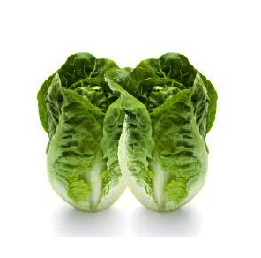 Lettuce Cos Heart
