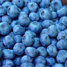 Blueberries - Special 2 For $10