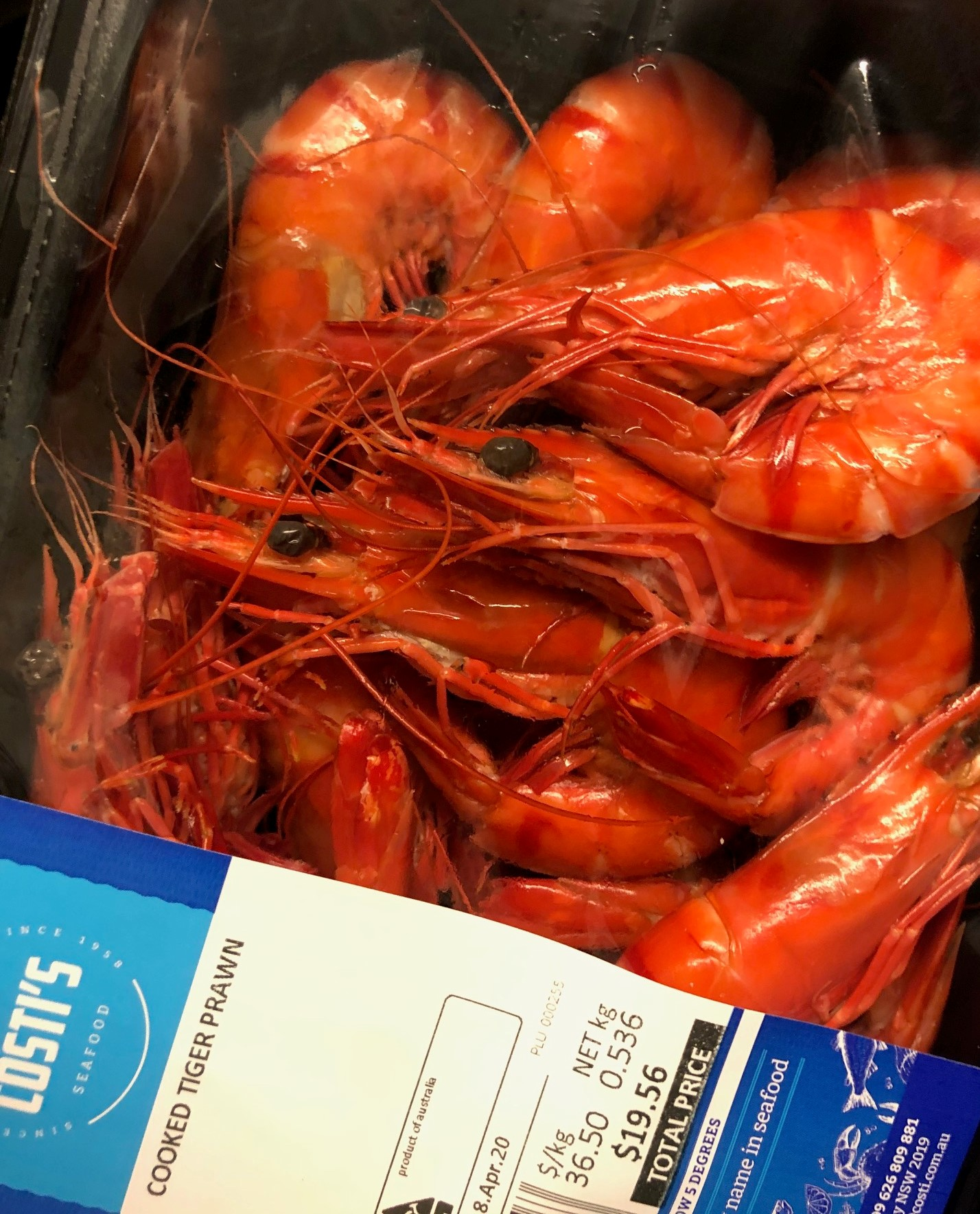 Qld Fresh Farmed cooked tiger prawns