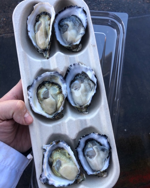 6 pack oysters